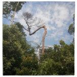 Árbol alto servilleta