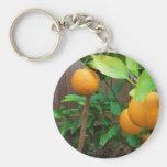 Árbol anaranjado llaveros personalizados