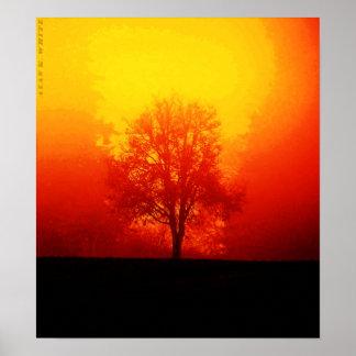 Árbol ardiente póster