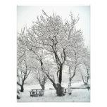 árbol arte con fotos