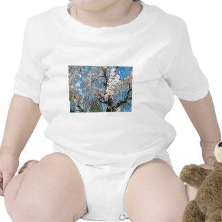 Árbol blanco, floreciente camiseta