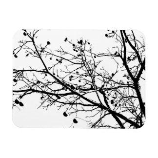 Árbol blanco y negro del invierno iman flexible