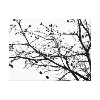 Árbol blanco y negro del invierno impresión en lona estirada