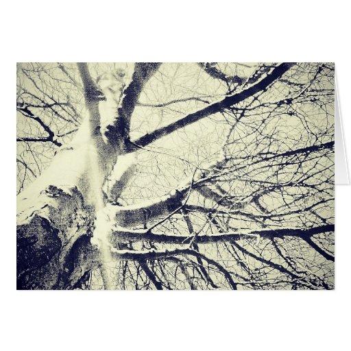 Árbol blanco y negro desnudo tarjeta de felicitación