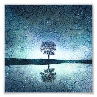Árbol bohemio azul místico bonito de la noche fotografía