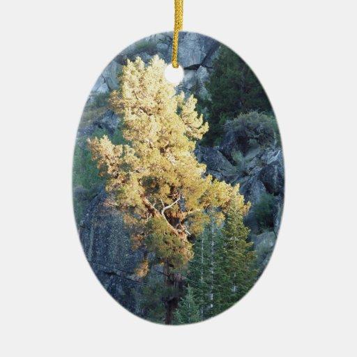 Árbol brillante adorno navideño ovalado de cerámica