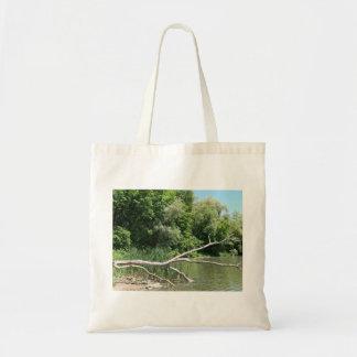 Árbol caido en bolso del lago bolsa