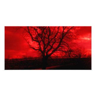 Árbol calvo abstracto tarjetas personales con fotos