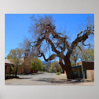 Árbol colgante, Cerrillos, New México Póster