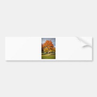 Árbol colorido del otoño etiqueta de parachoque