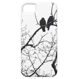 árbol con la casamata del iPhone 5 de los grajos iPhone 5 Coberturas