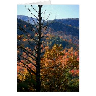 Árbol con las montañas - Adirondacks Felicitacion