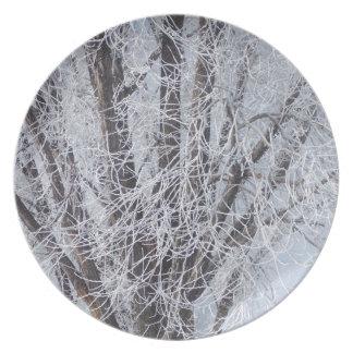Árbol congelado plato