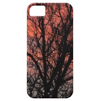 Árbol contra el cielo rojo iPhone 5 carcasas