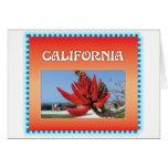 Árbol coralino en California Tarjeta
