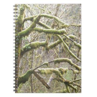 Árbol cubierto de musgo libreta espiral
