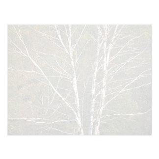 Árbol de abedul blanco abstracto al borde de un ha membrete