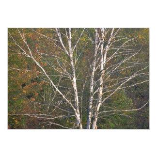 """Árbol de abedul blanco abstracto al borde de un invitación 5"""" x 7"""""""