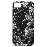 Árbol de abedul blanco y negro iPhone 5 carcasa