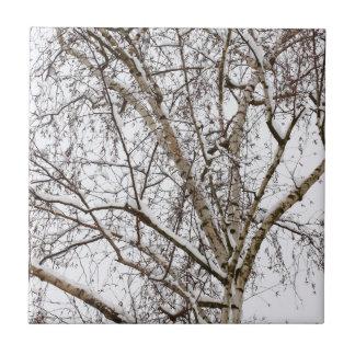 árbol de abedul con nieve azulejo cuadrado pequeño