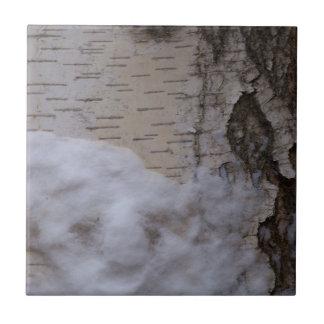Árbol de abedul en nieve azulejo cuadrado pequeño