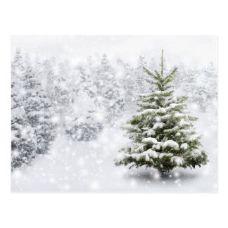 Árbol de abeto en nieve gruesa tarjetas postales
