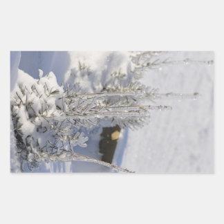Árbol de abeto helado con nieve rectangular altavoces