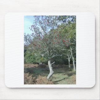 árbol de acebo en nuevo bosque tapete de ratón
