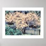 Árbol de almendra de florecimiento posters
