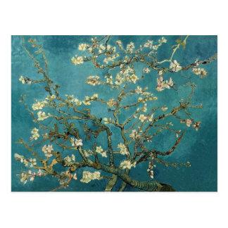 Árbol de almendra floreciente (1890) por Van Gogh Tarjetas Postales