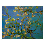 Árbol de almendra floreciente de Van Gogh, flor Póster