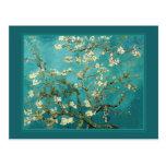 Árbol de almendra floreciente de Van Gogh Postal