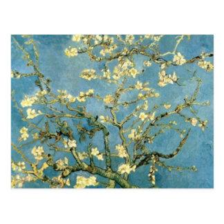 Árbol de almendra floreciente de Van Gogh Tarjetas Postales