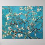 Árbol de almendra floreciente de Vincent van Gogh Poster