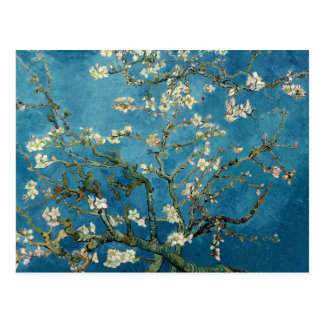 Árbol de almendra floreciente de Vincent van Gogh Postal