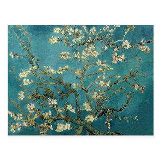 Árbol de almendra floreciente - Van Gogh Postales