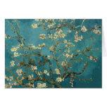 Árbol de almendra floreciente - Van Gogh Tarjetón