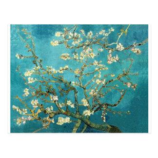 Árbol de almendra floreciente - Vincent van Gogh Tarjetas Postales