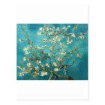 Árbol de almendra floreciente - Vincent van Gogh Postal