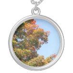 Árbol de arce del otoño colgante redondo