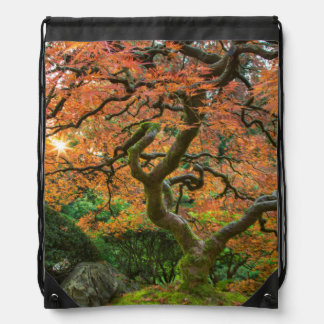 Árbol de arce en los jardines del japonés en otoño mochilas