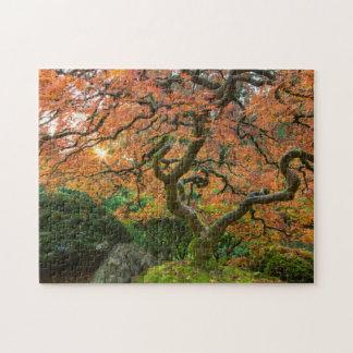 Árbol de arce en los jardines del japonés en otoño rompecabezas con fotos