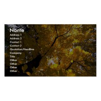 Árbol de arce grande colorido en la caída tarjetas de visita