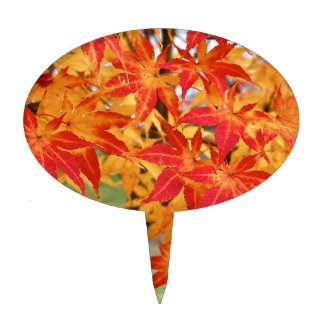 árbol de arce japonés hermoso en caída figura para tarta