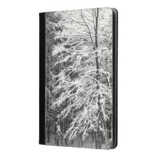Árbol de arce resumido en foto de la nieve