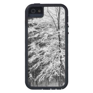 Árbol de arce resumido en nieve iPhone 5 funda
