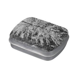 Árbol de arce resumido en nieve frascos de dulces