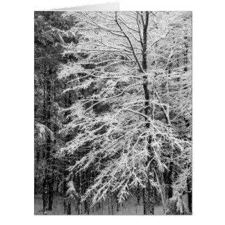 Árbol de arce resumido en nieve tarjeta