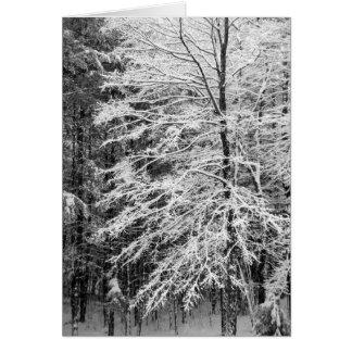 Árbol de arce resumido en nieve tarjeta de felicitación