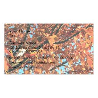 Árbol de arce rojo en otoño tarjeta de negocio